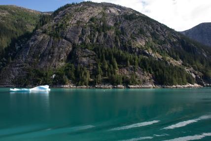 Fjord iceberg