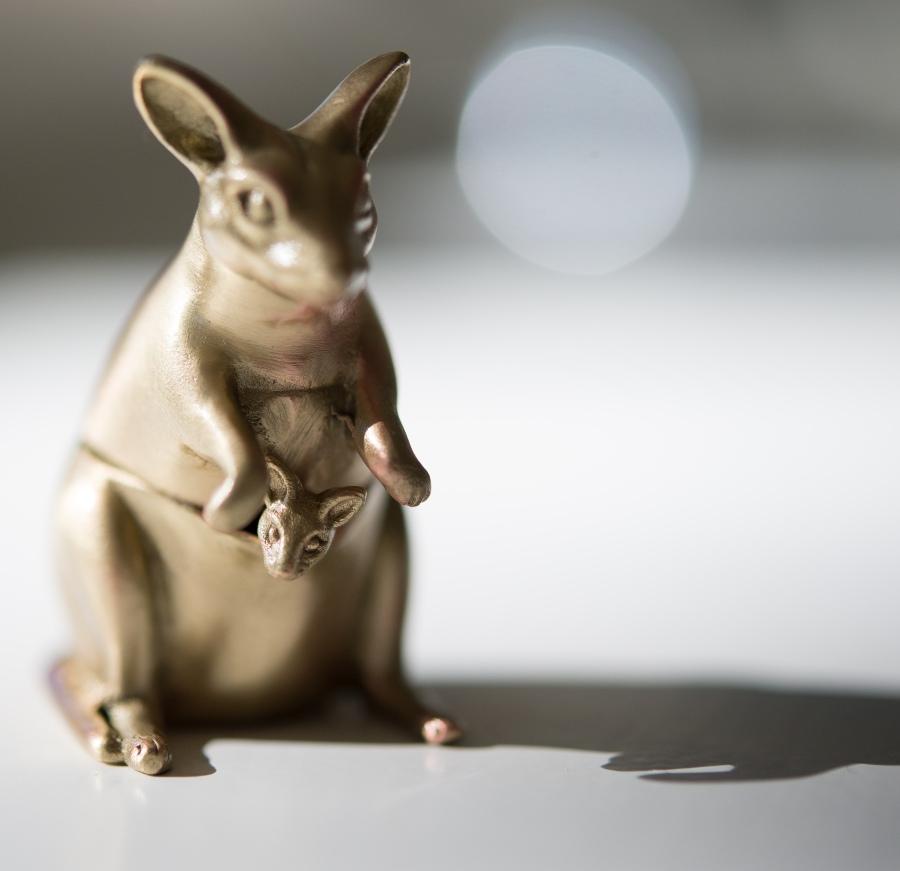 kangaroo s&P