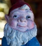 blue gnome-2